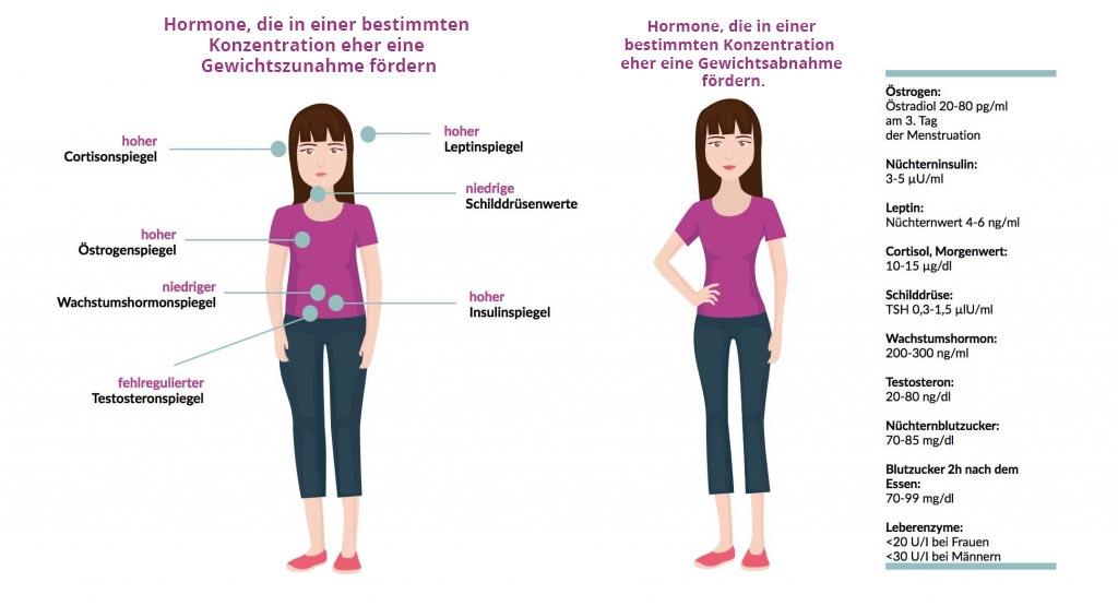 Gewichtsmanagement hilft Ihnen der Gewichtszunahme zu trotzen